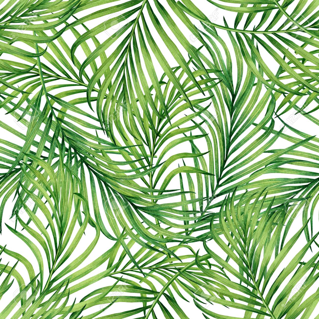 Watercolor painting coconut,banana,palm leaf,green leaves seamless pattern background.Watercolor hand drawn illustration tropical exotic leaf prints for wallpaper,textile Hawaii aloha jungle style. - 138071465