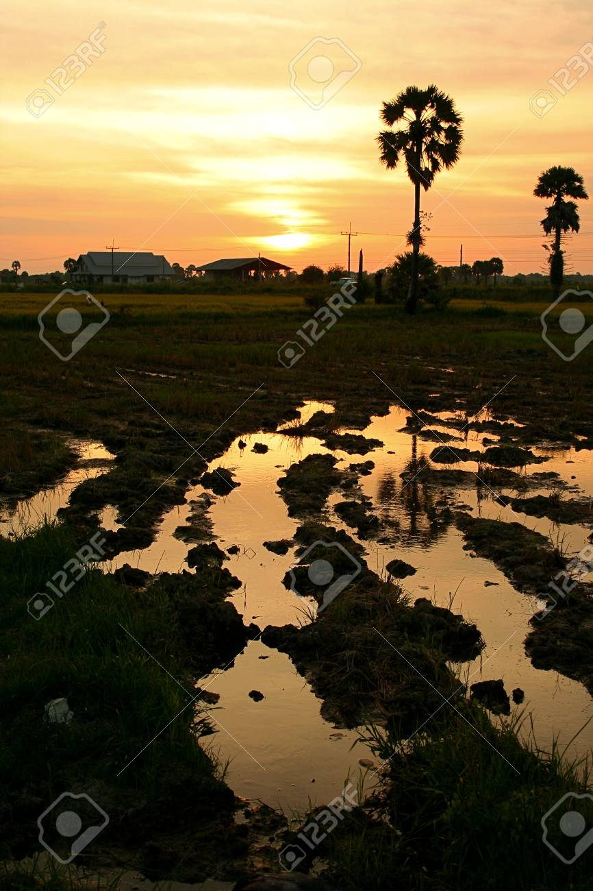 The evening before sunset rural Thailand Stock Photo - 8055665