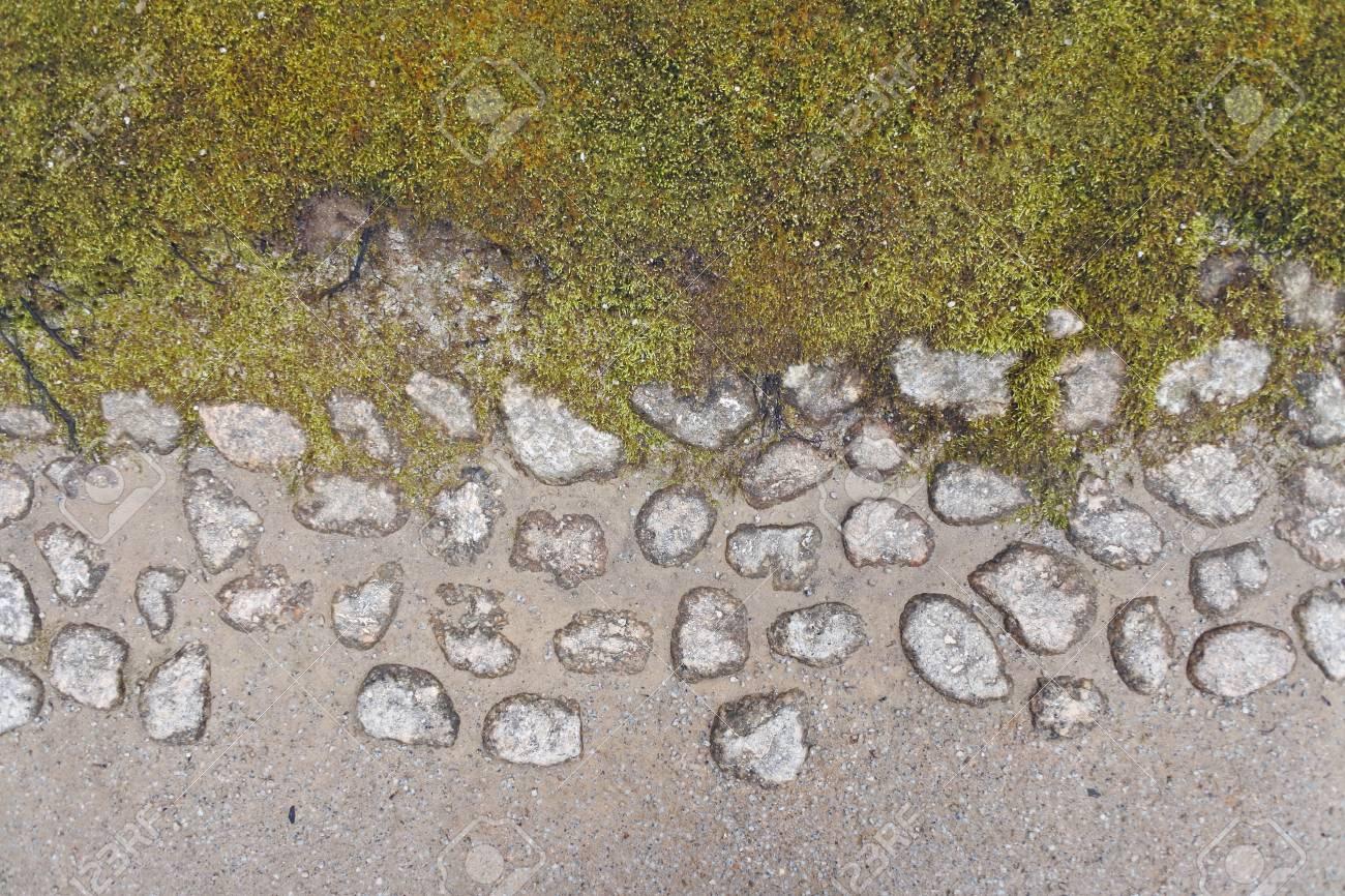 Gros plan de l\'élément de jardin zen, recouvert de mousse et de gravier le  long du chemin de la terre compacte