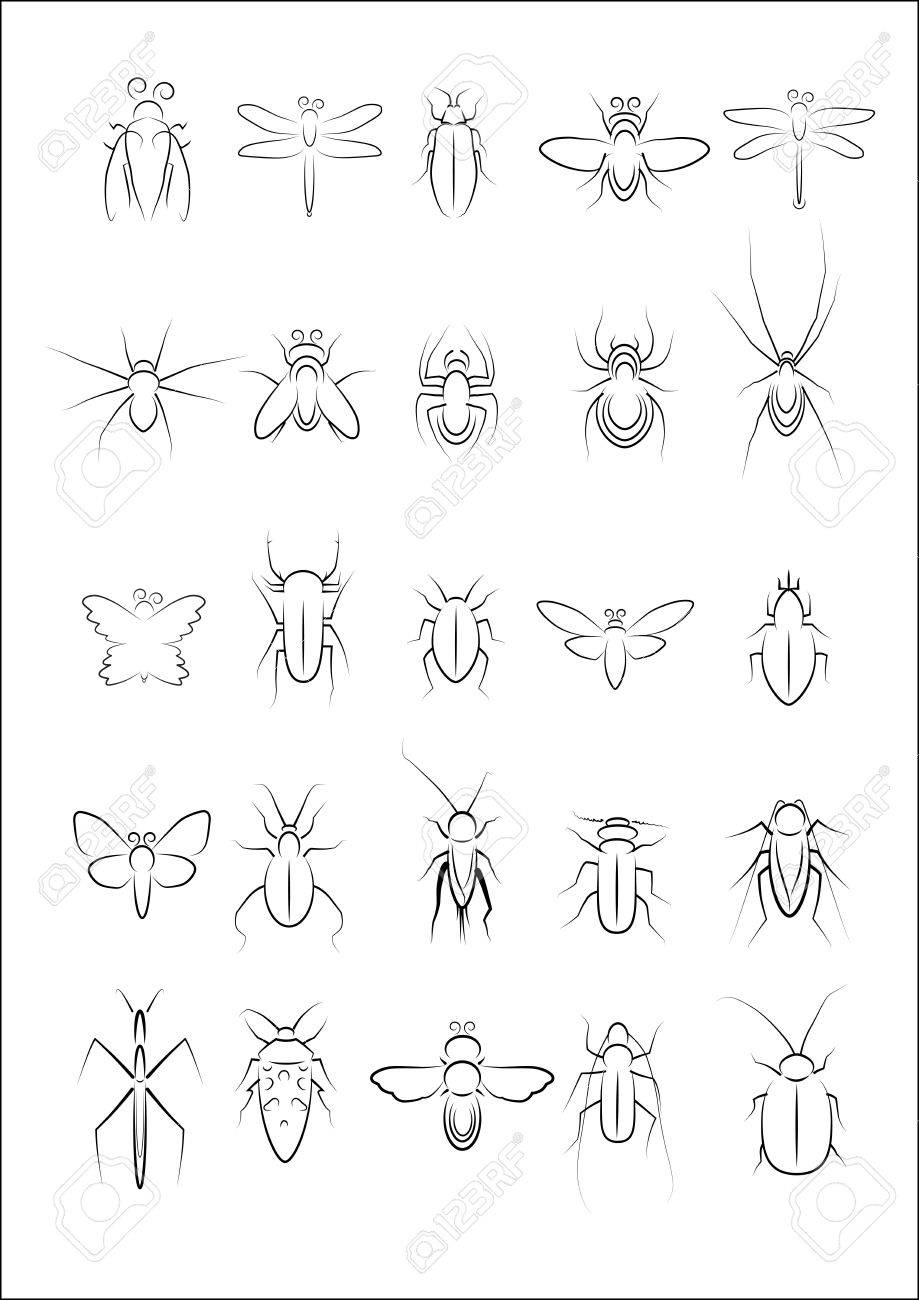 Collection of insect vector Stock Vector - 15013754