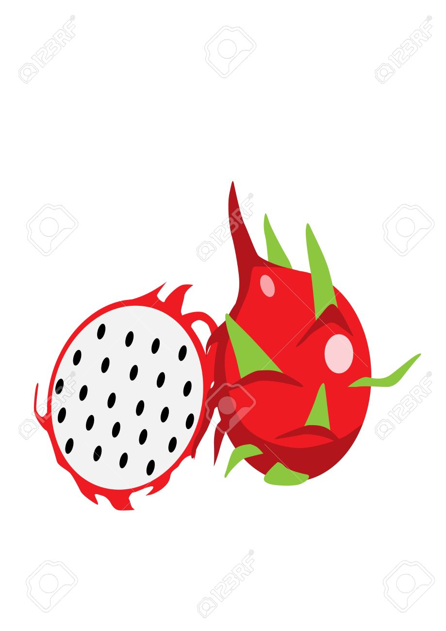 Dragon fruit Stock Vector - 16076969