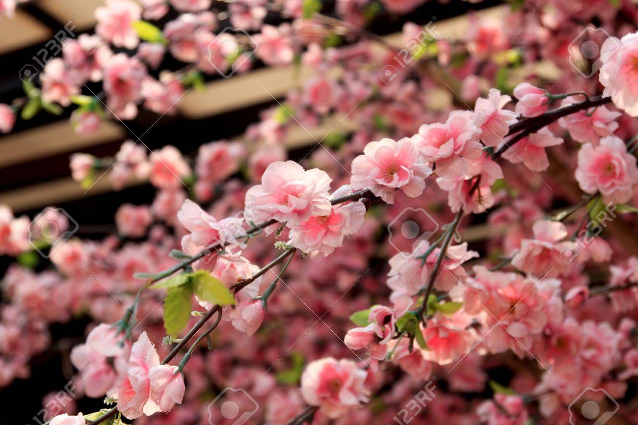 The beautiful pink artificial cherry blossoms. Stock Photo - 17266351