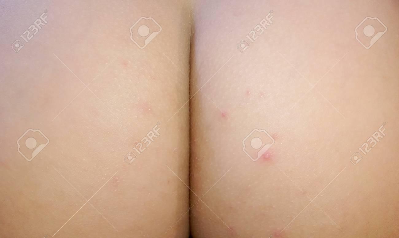 squerter porn