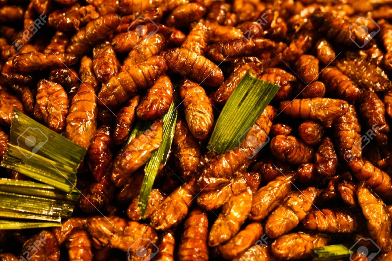 Fried worms, Thai food