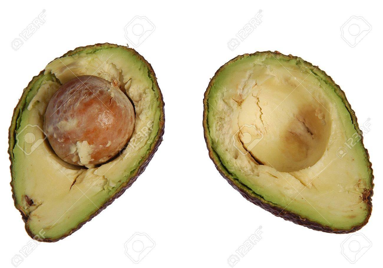Fresh season avacado cut in half ready to eat - 16210518