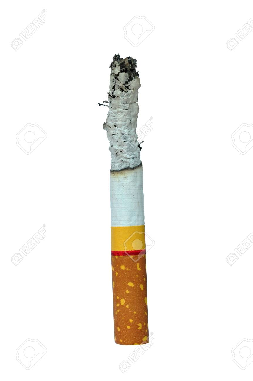 One Cigarette isolated on the white background Stock Photo - 13117100