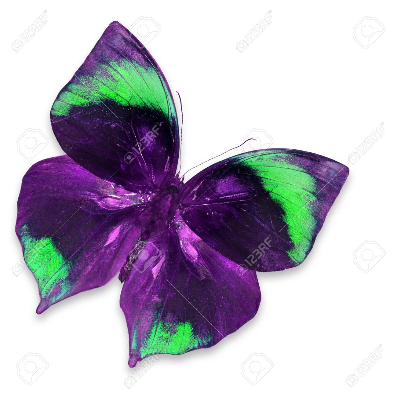 Farfalla Viola E Verde Isolato Su Sfondo Bianco