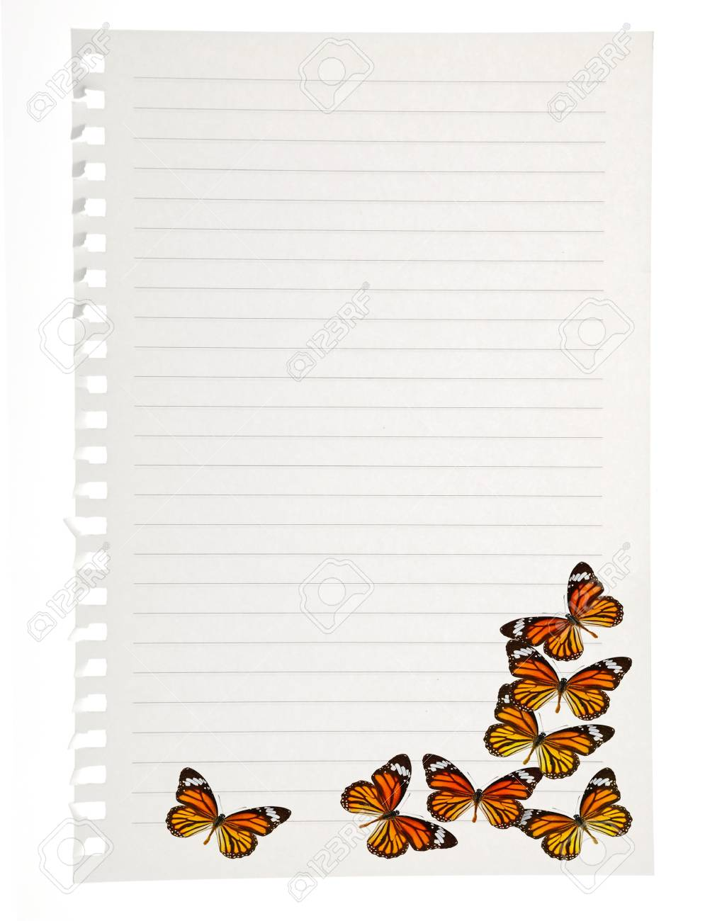 Notebook with Butterfly Stock Photo - 17233478