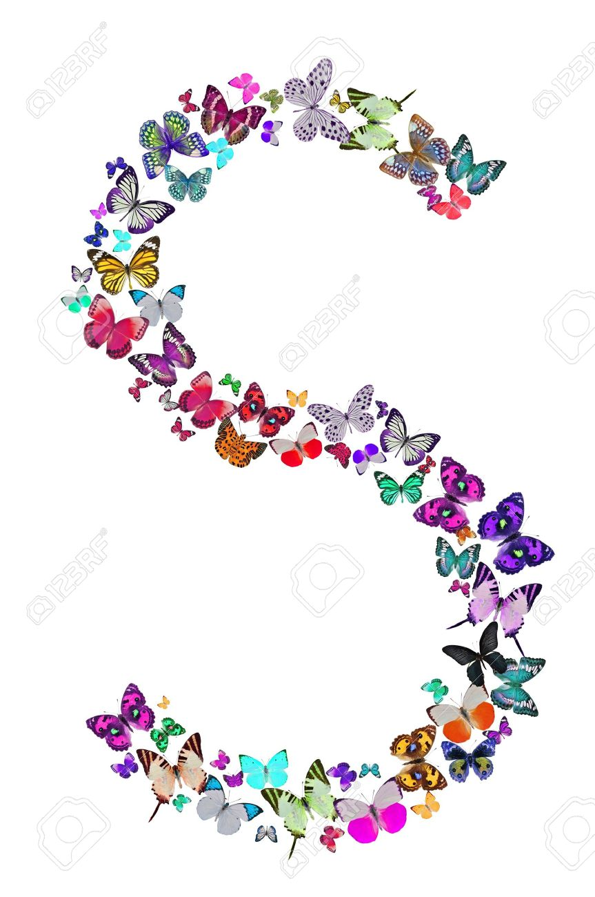 Lovely Butterfly Font In White Letter S Stock Photo   18240101