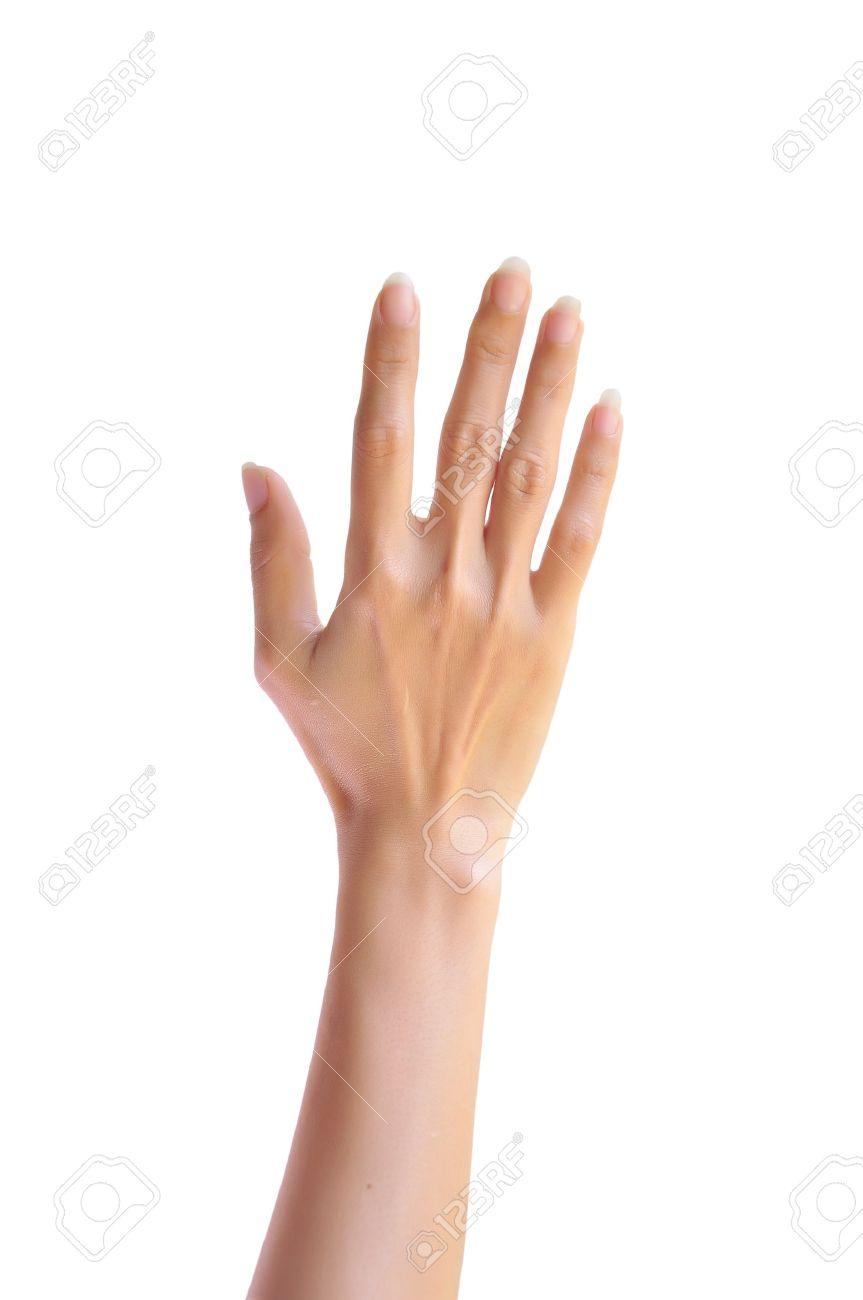 Он поднял свои руки перевод