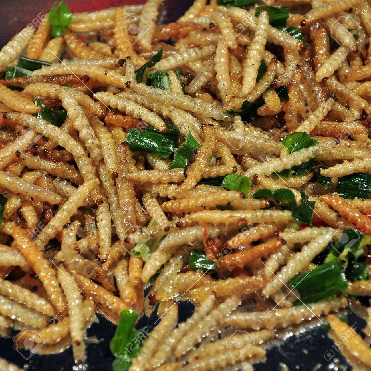 Deep Fried Caterpillars Worms Stock Photo 19911878
