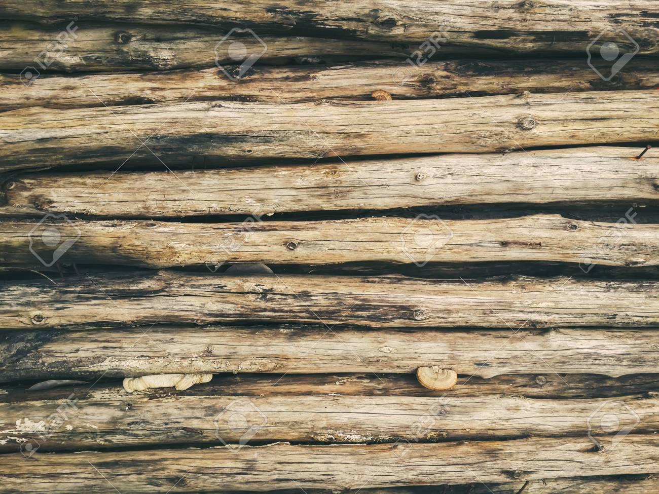 Piastrelle senza soluzione di continuità in legno parete di fondo di