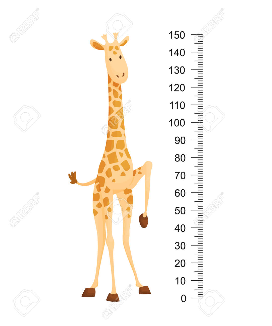 Funny giraffe. Cheerful funny giraffe with long neck. Giraffe meter wall or height chart or wall sticker. Illustration with scale from 2 to 150 centimeter to measure growth - 158029360
