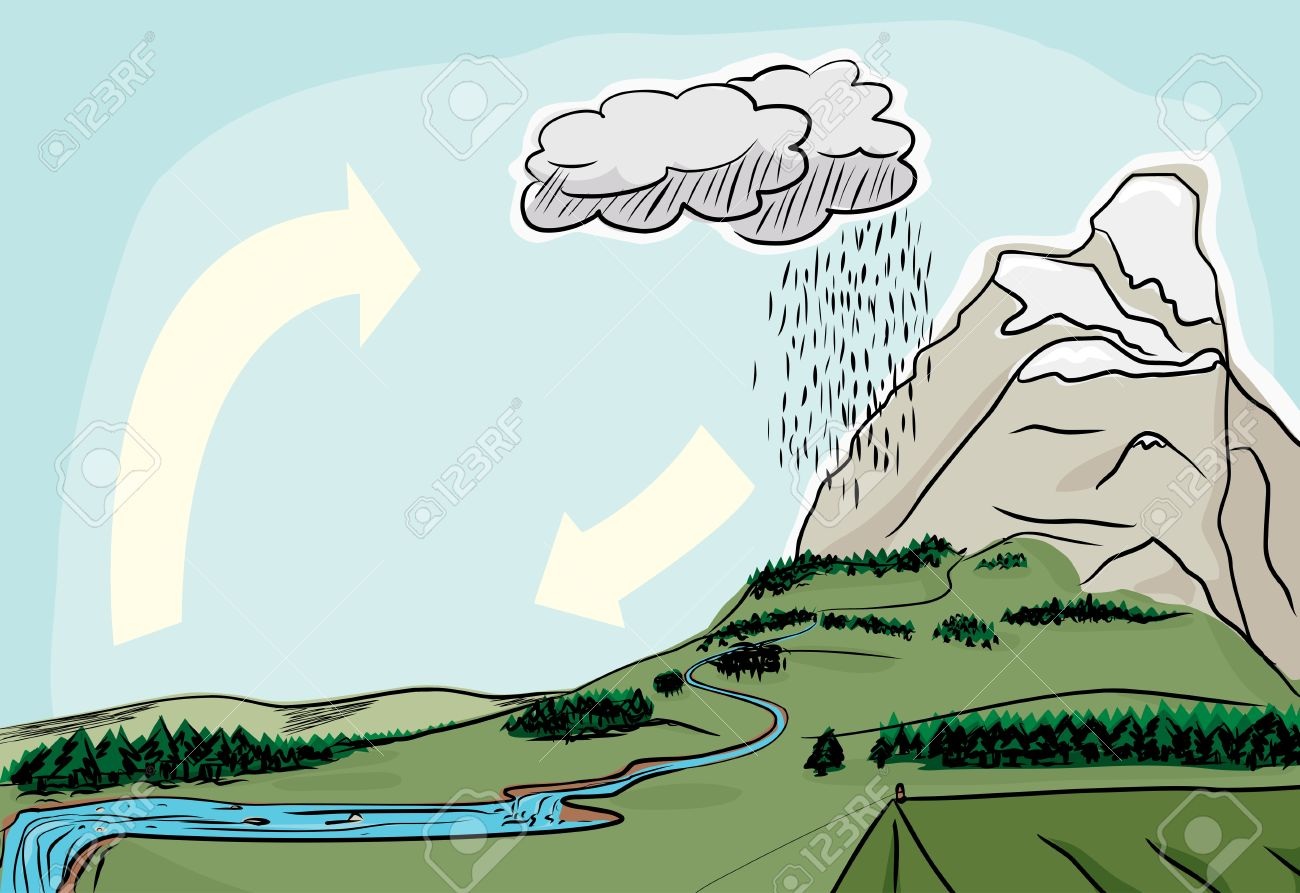 Water cycle in the wilderness illustrated diagram Stock Vector - 16983708
