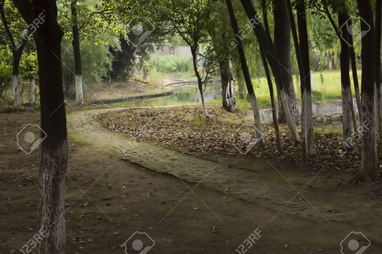 A Monks Path Stock Photo - 13920562