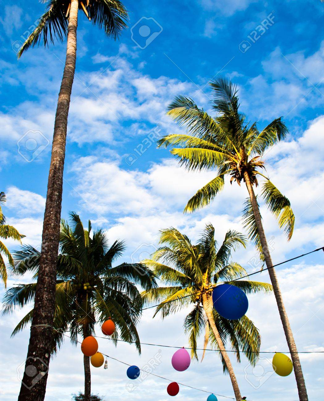 Coconut trees with multi-colored balloons. Was designed as part of the carnival. Stock Photo - 12291738