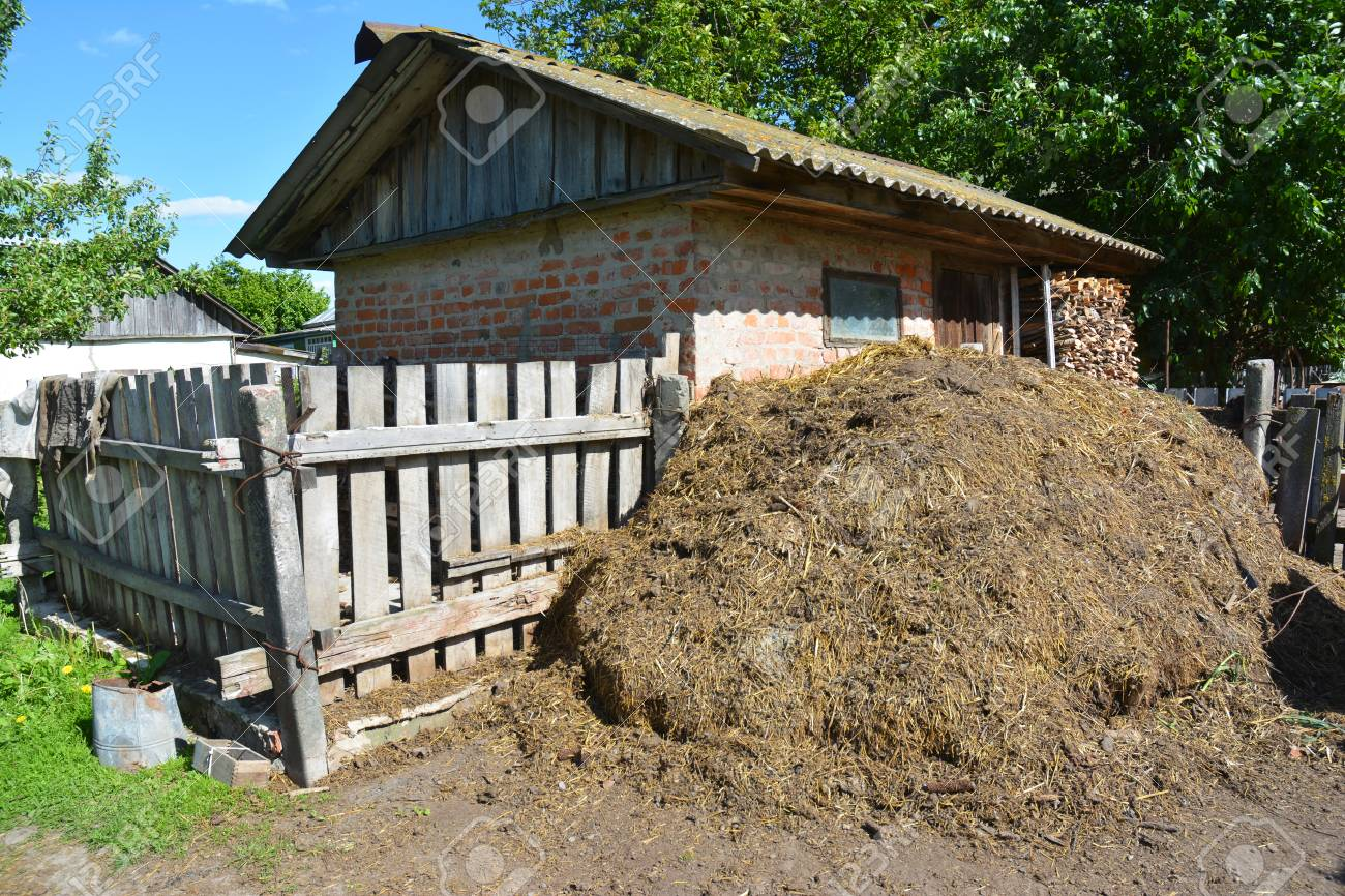 Stack Of Fertilizer From Cow Manure And Straw In Countryside.. Stock ...