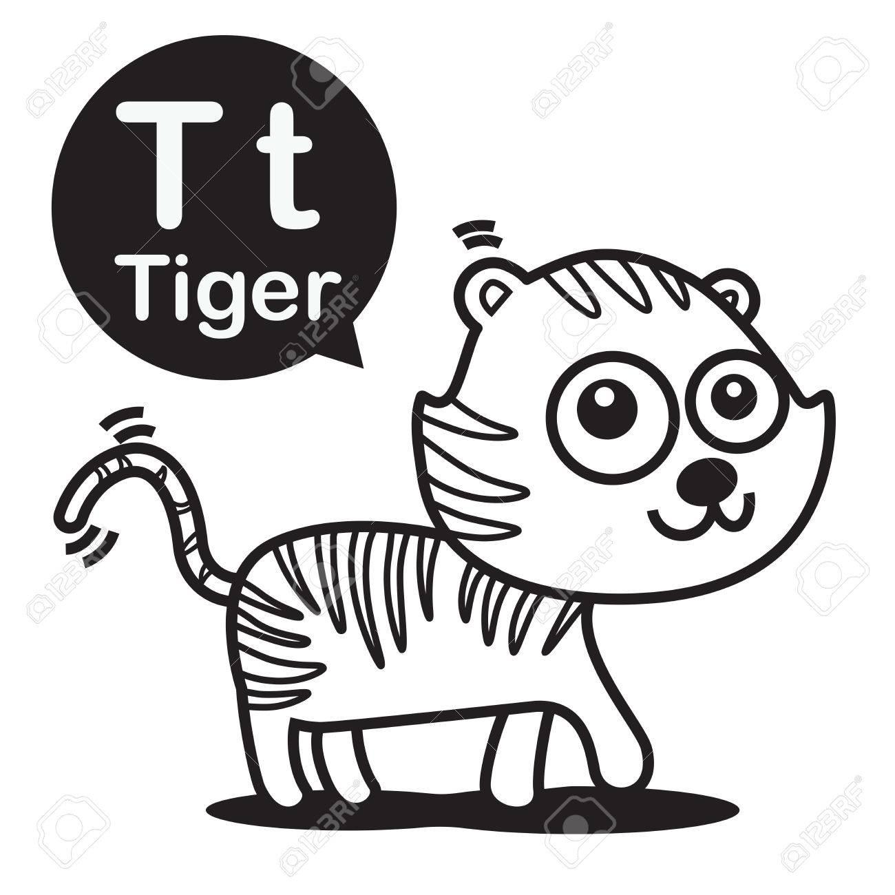 T Tiger Tier Cartoon Und Alphabet Für Kinder Zum Lernen Und Malvorlagen Vektor Illustration Eps10