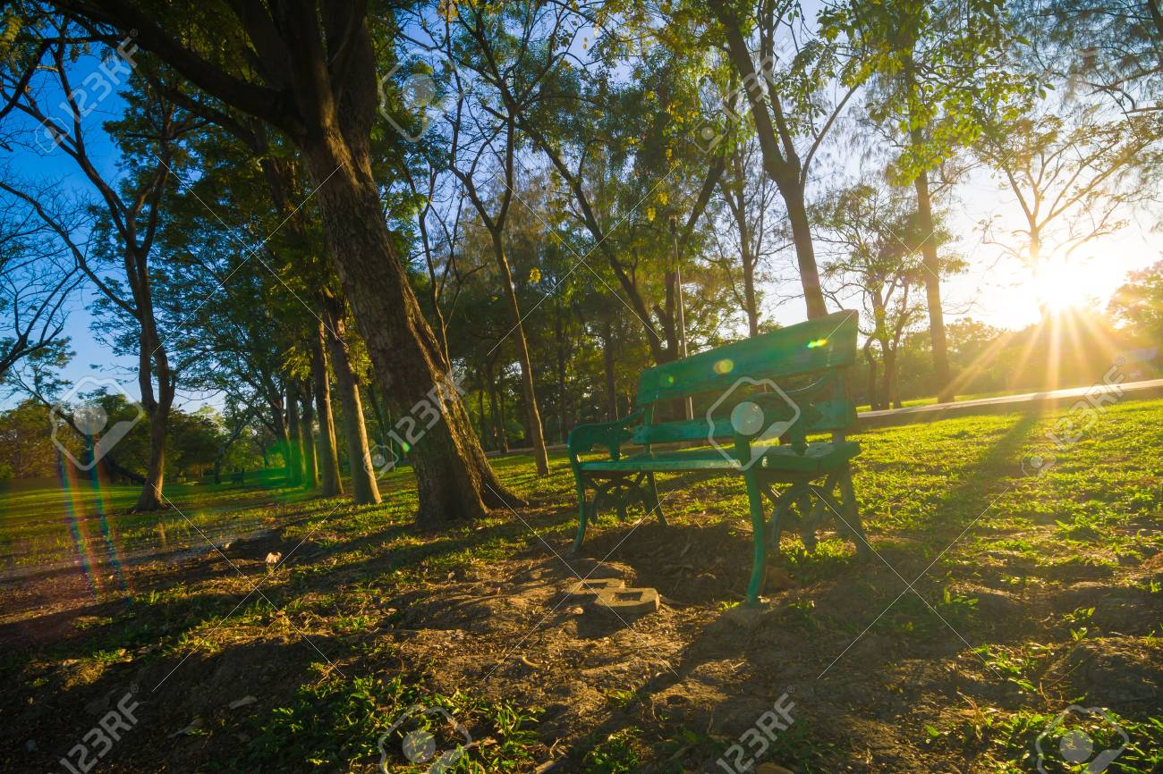 Green Garden Citypark Evening Sunset Stock Photo, Picture And ...