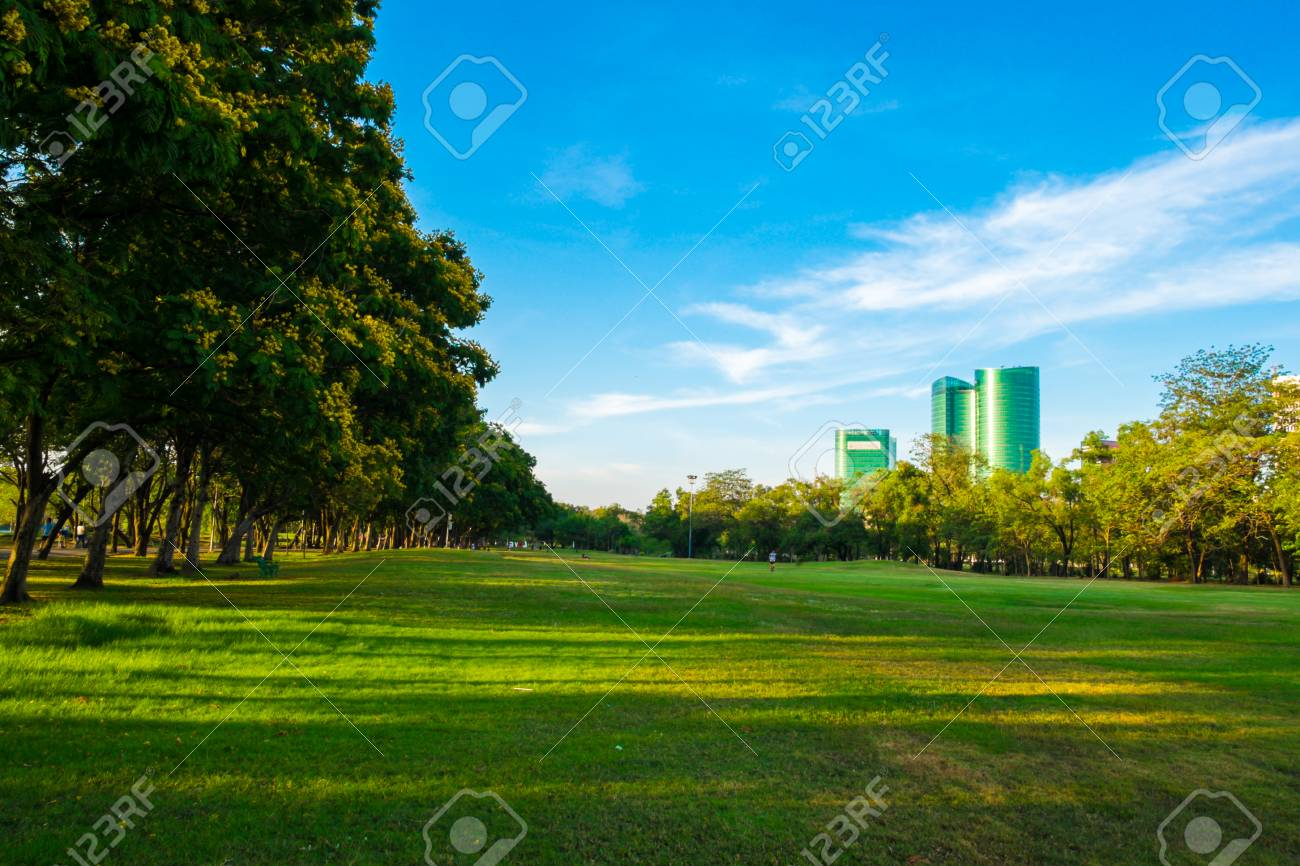Green Meadow Field In City Park Blue Sky Nature Green Scene Stock Photo Picture And Royalty Free Image Image 78654530