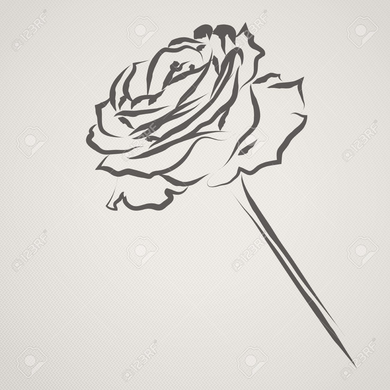 A Rose Drawn In An Ink Brush Style On A Textured Paper Effect ...