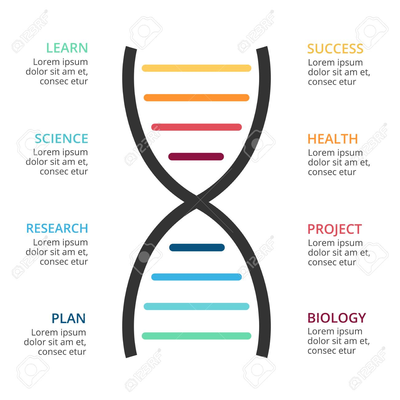 Vector Dna Science Infographic Medical Diagram Healthcare Graph