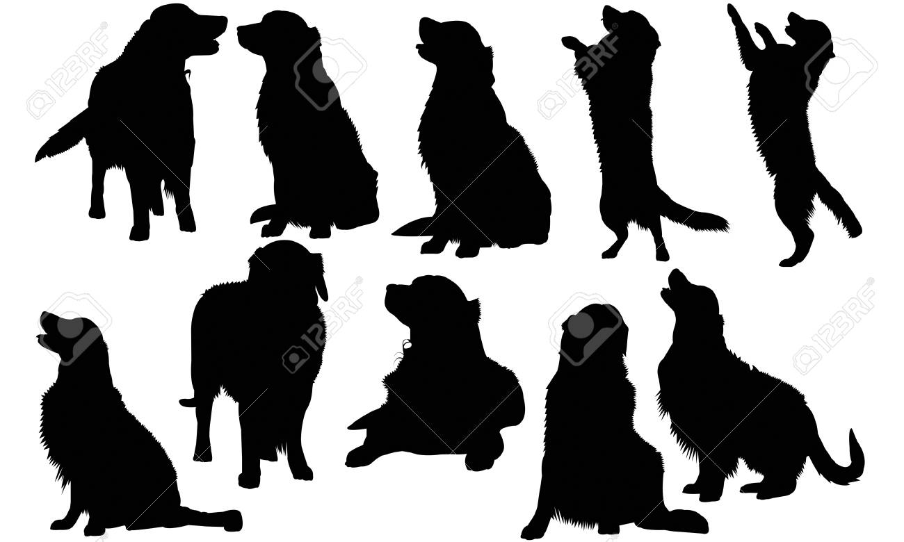 Golden Retriever Dog Silhouette Illustration Royalty Free Cliparts