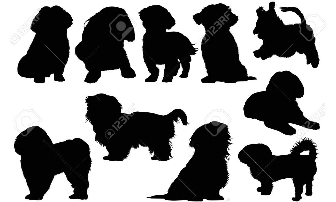 Shih Tzu Dog Silhouette Illustration Royalty Free Cliparts Vectors