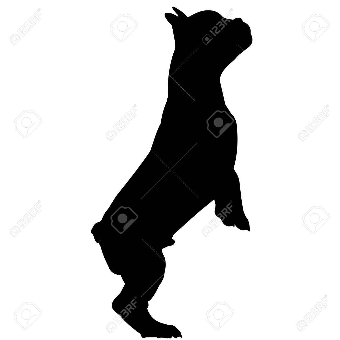 French Bulldog Dog Silhouette Vector Graphics - 157967644