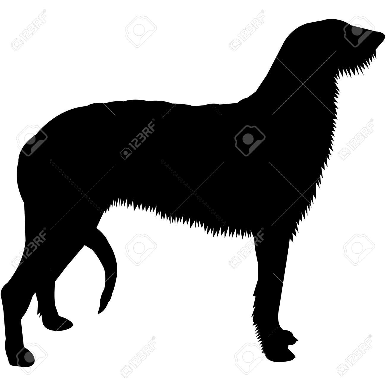 Scottish Deerhound Silhouette Vector - 158518916