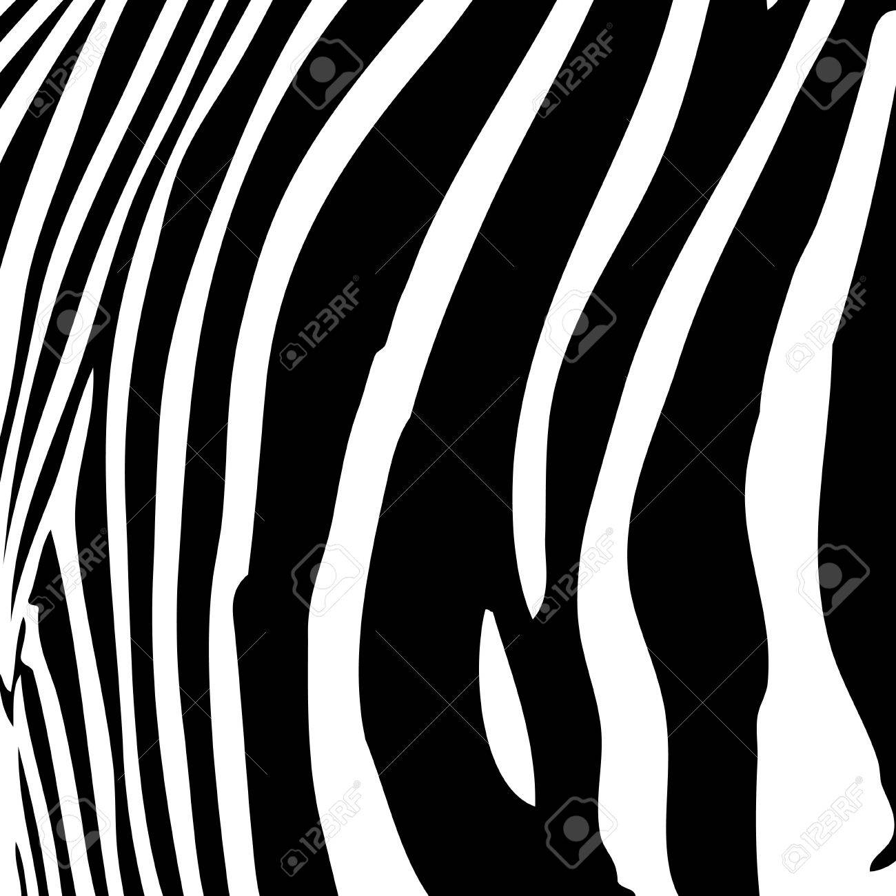 Zebra stripes pattern in black and white that works great as a background. - 4349350