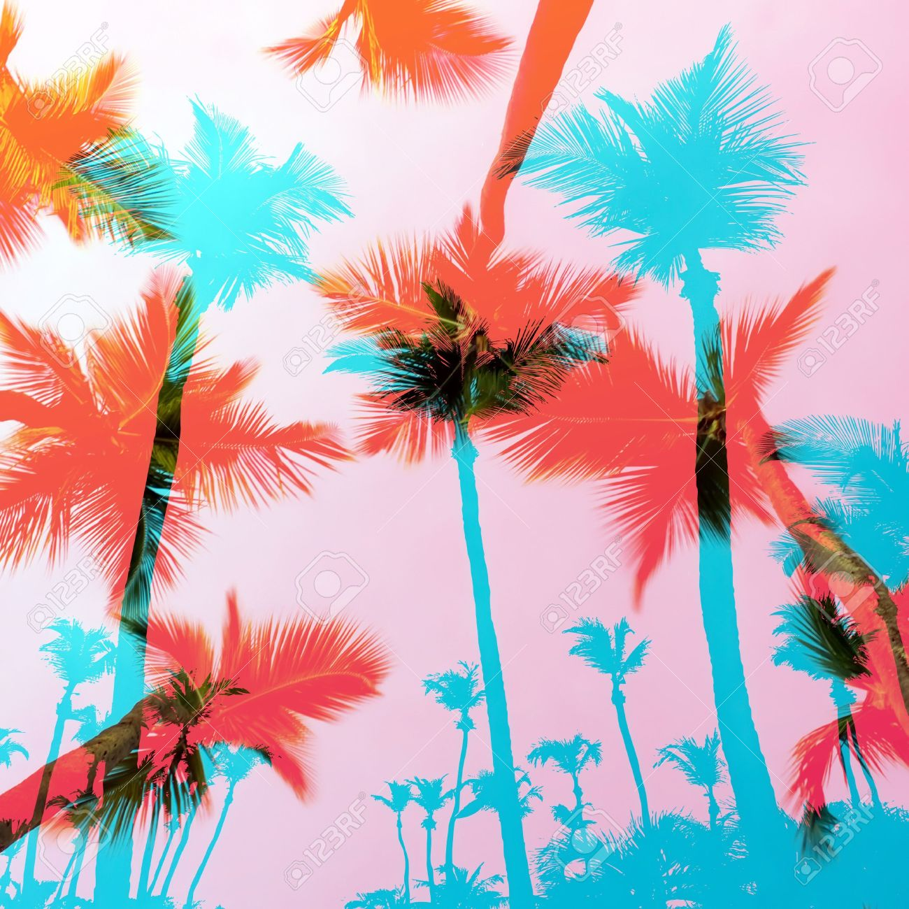 Tropical coconut palm tree silhouettes montage over a tropical sky. Stock Photo - 20982243