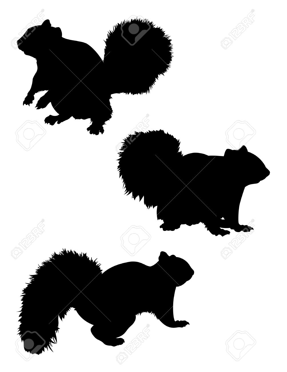 squirrel silhouette images  stock pictures royalty free squirrel  - squirrel silhouette vector squirrel silhouette