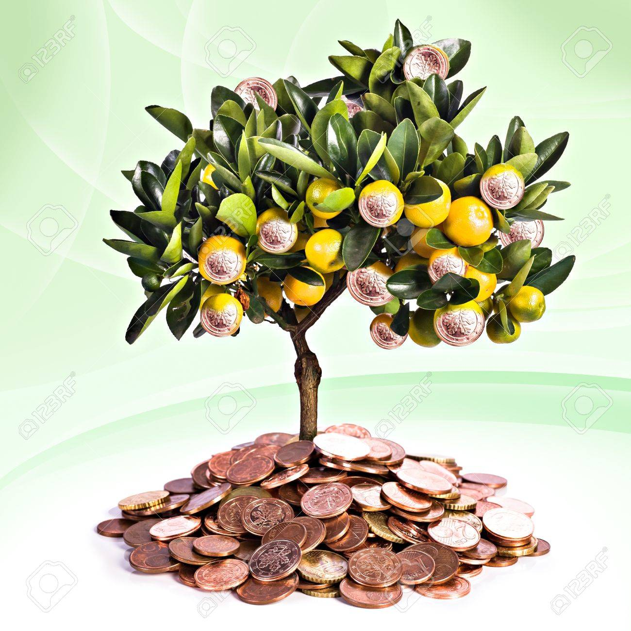 a symbolic picture for financial success and money savings Stock Photo - 12614439