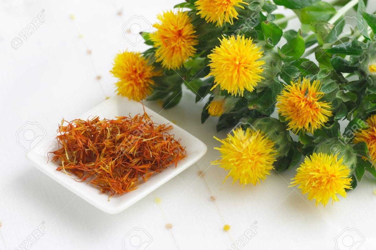 Dried and fresh flowers safflower - 15707510
