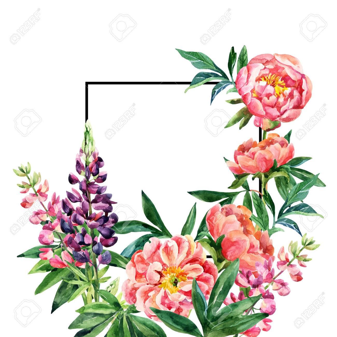 Aquarell Garten Blumen Karte. Lupine Und Pfingstrose Blüht Mit ...