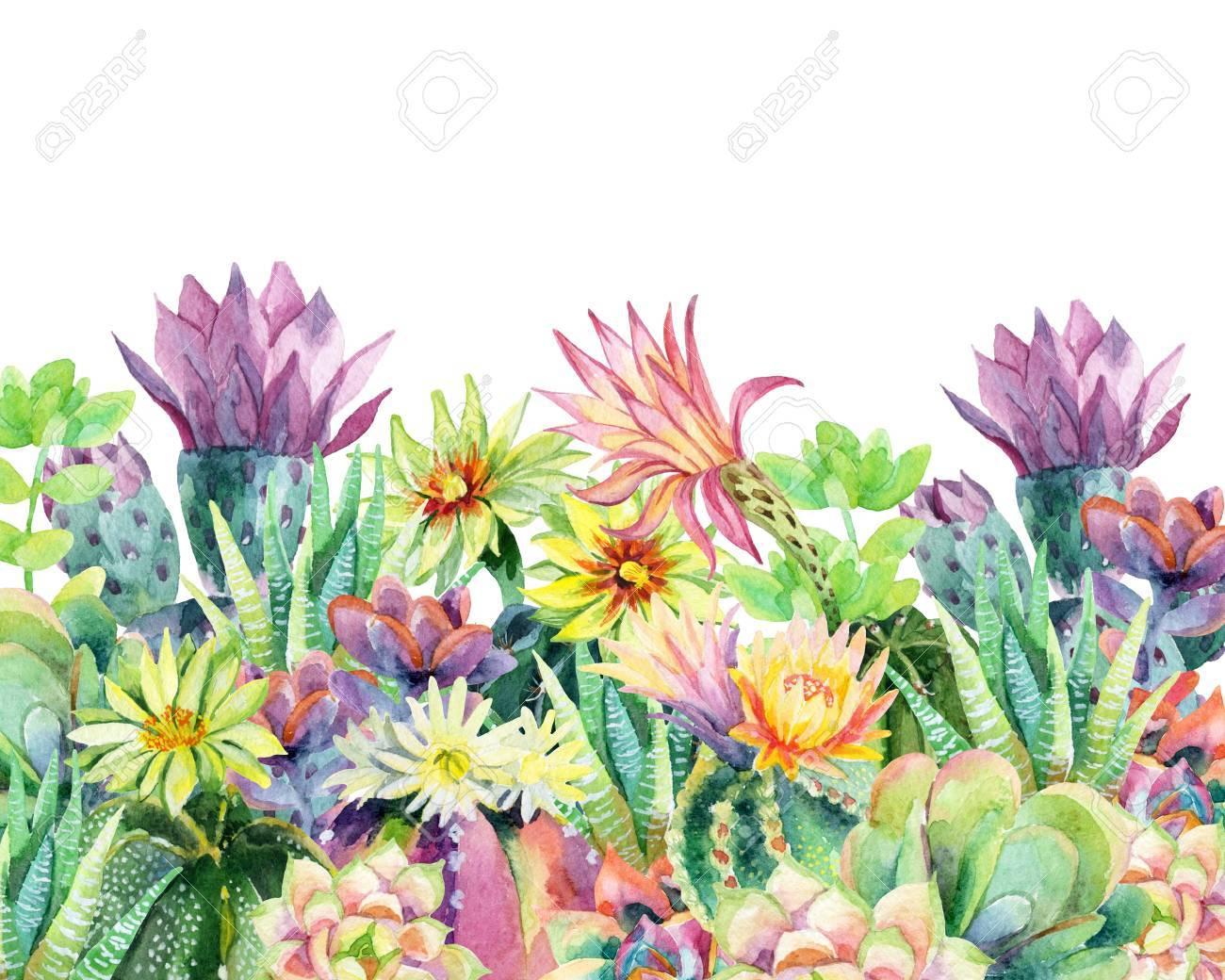 Cactus Esotici Con Fiori. Piante Grasse E Cactus. Illustrazione  Dellu0027acquerello Dipinto A Mano Per La Progettazione Del Giardino.