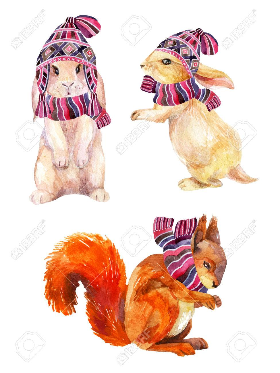 7190df97218 Rabbit and squirrel with winter hat and scarf. Cute bunny in cozy knitted  clothes.