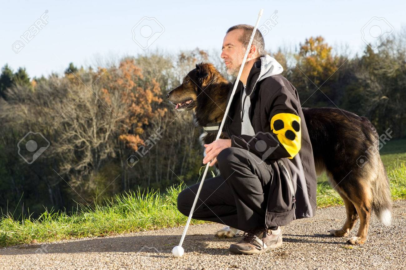 A blind man on a walk with his assistance dog - 35704264
