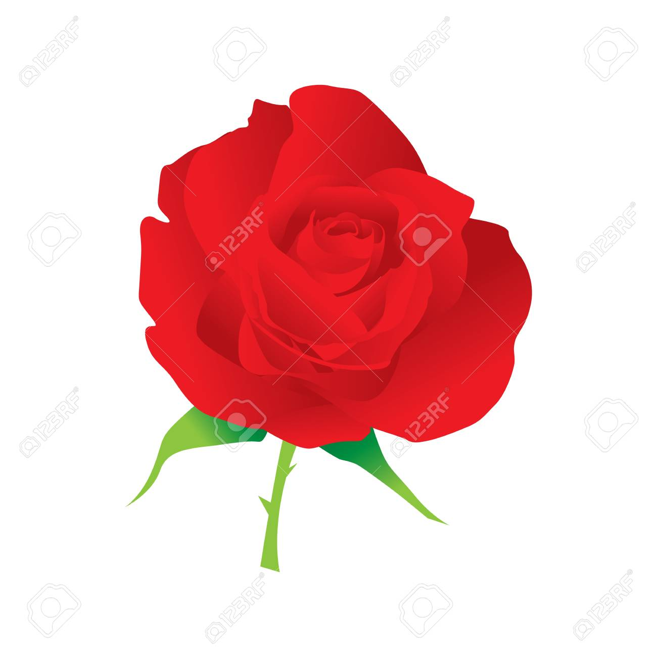 rose vector. Stock Vector - 17521974