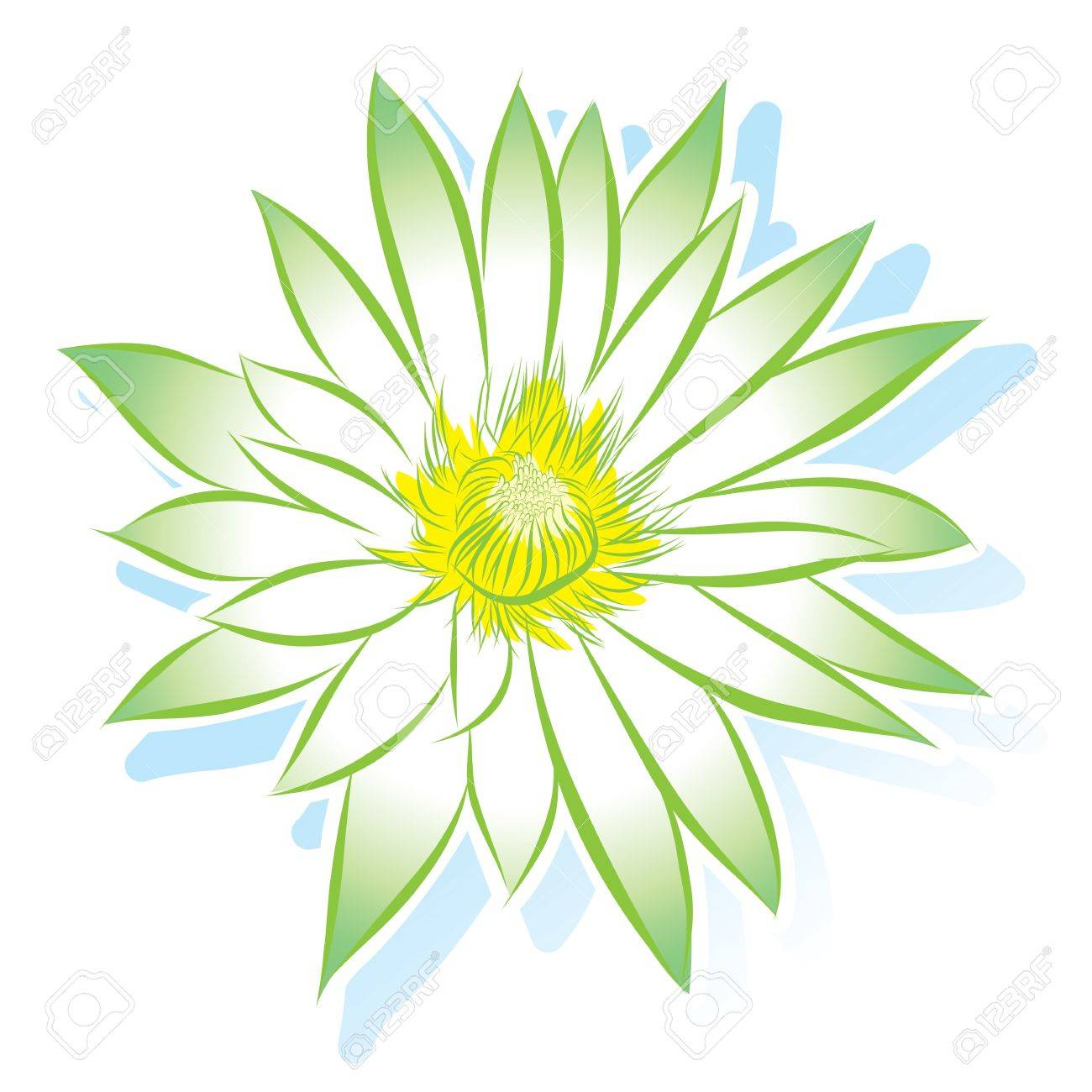 vector flower lotus Stock Vector - 17800962