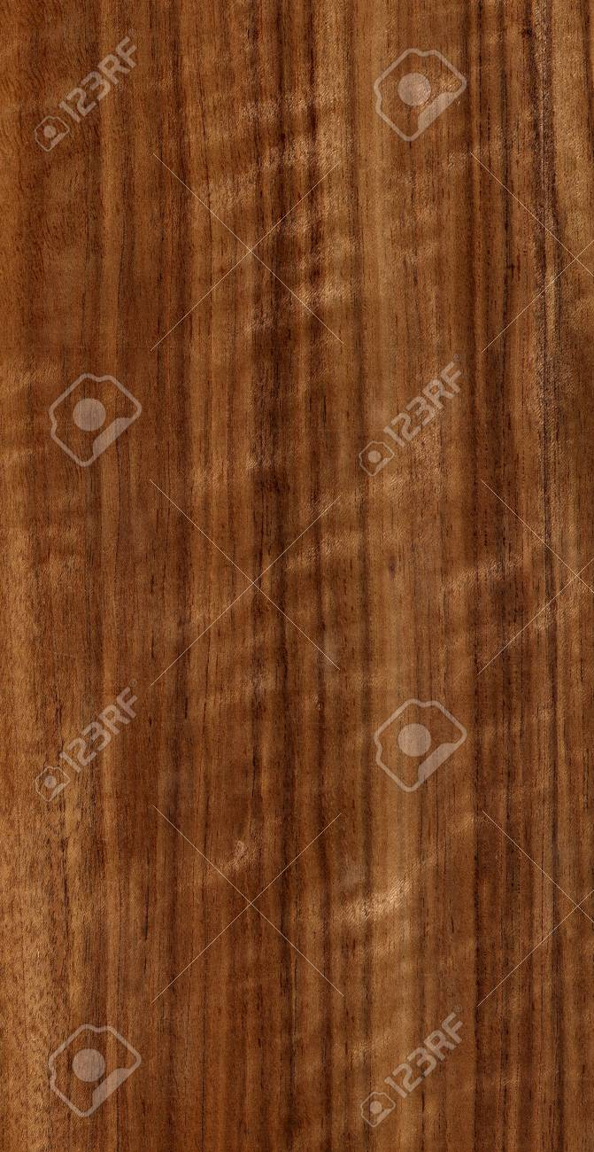 wood texture Stock Photo - 2479021