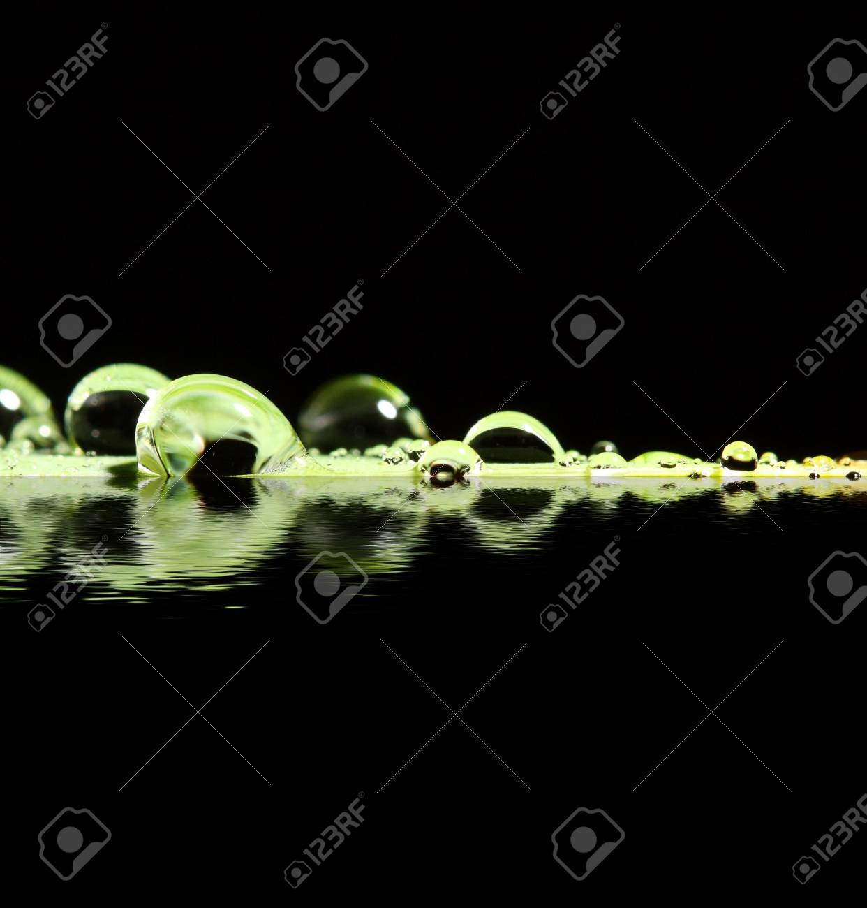 green leaf and drop background macro image Stock Photo - 3852054