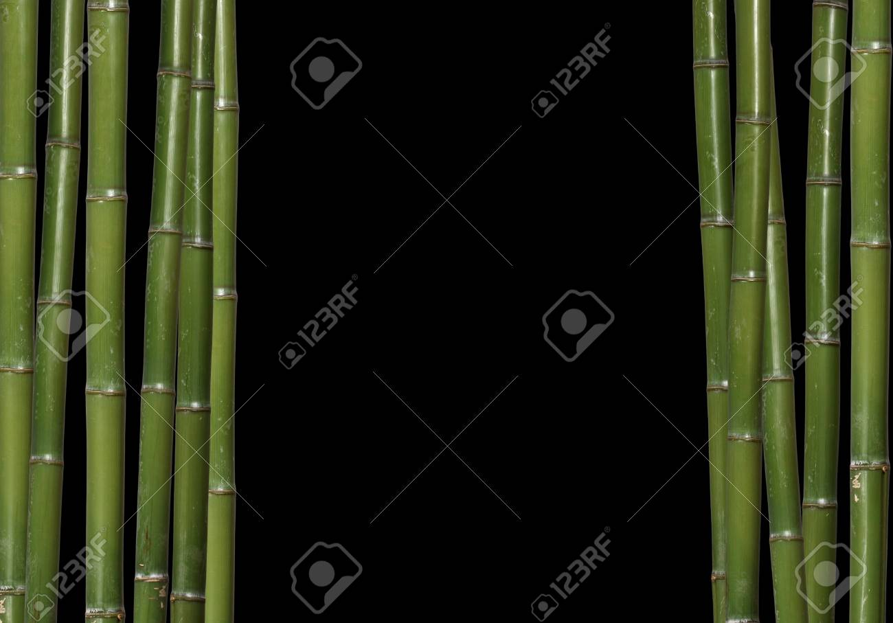 fine image of classic hard bamboo background with space for text Stock Photo - 3947103