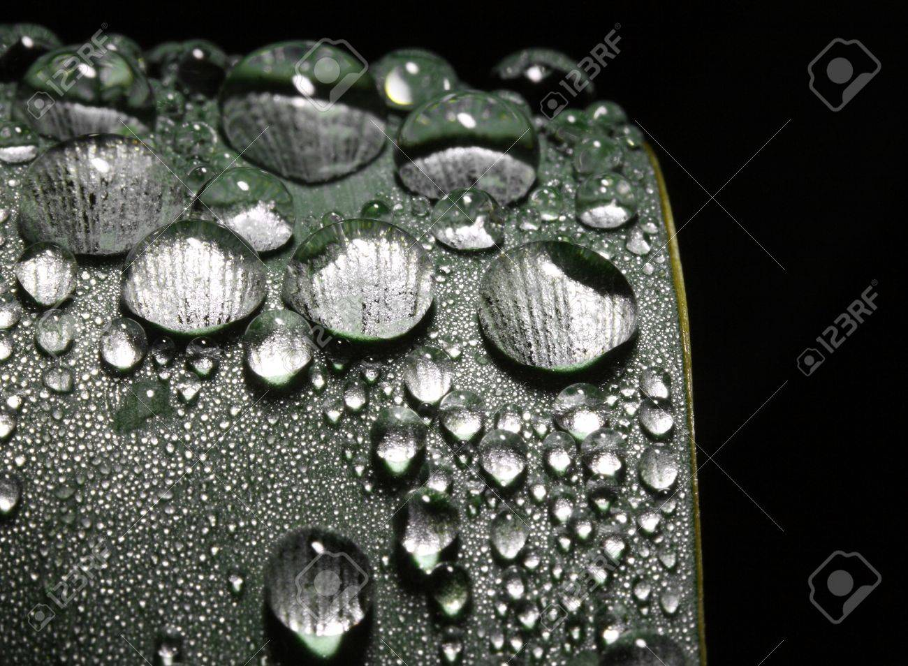fine close up image of rain drop on leaf stock photo picture and