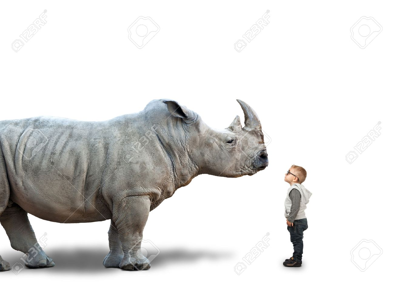 little child and huge rhino on white - 48598976