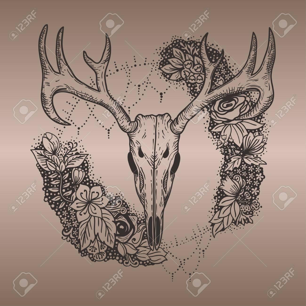 Stylized Deer Skull And Flowers Hand Drawn Original Illustration ...