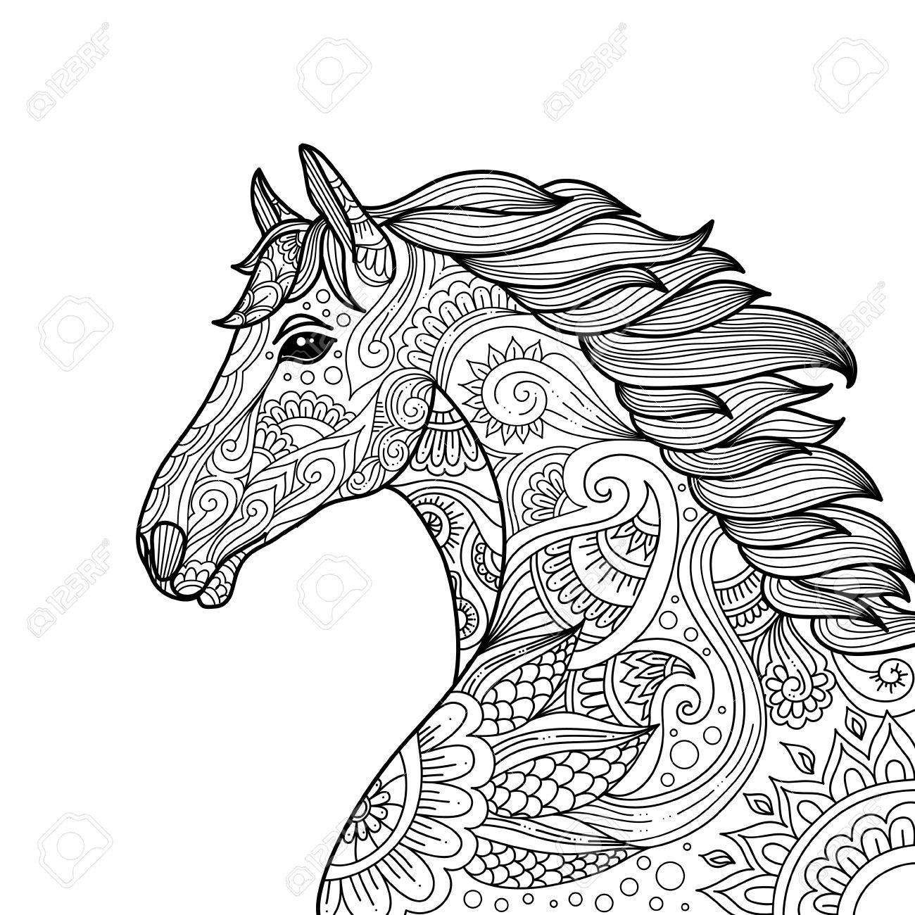 Stylized Hand Drawn Head Horse Coloring Page For Adults Vector