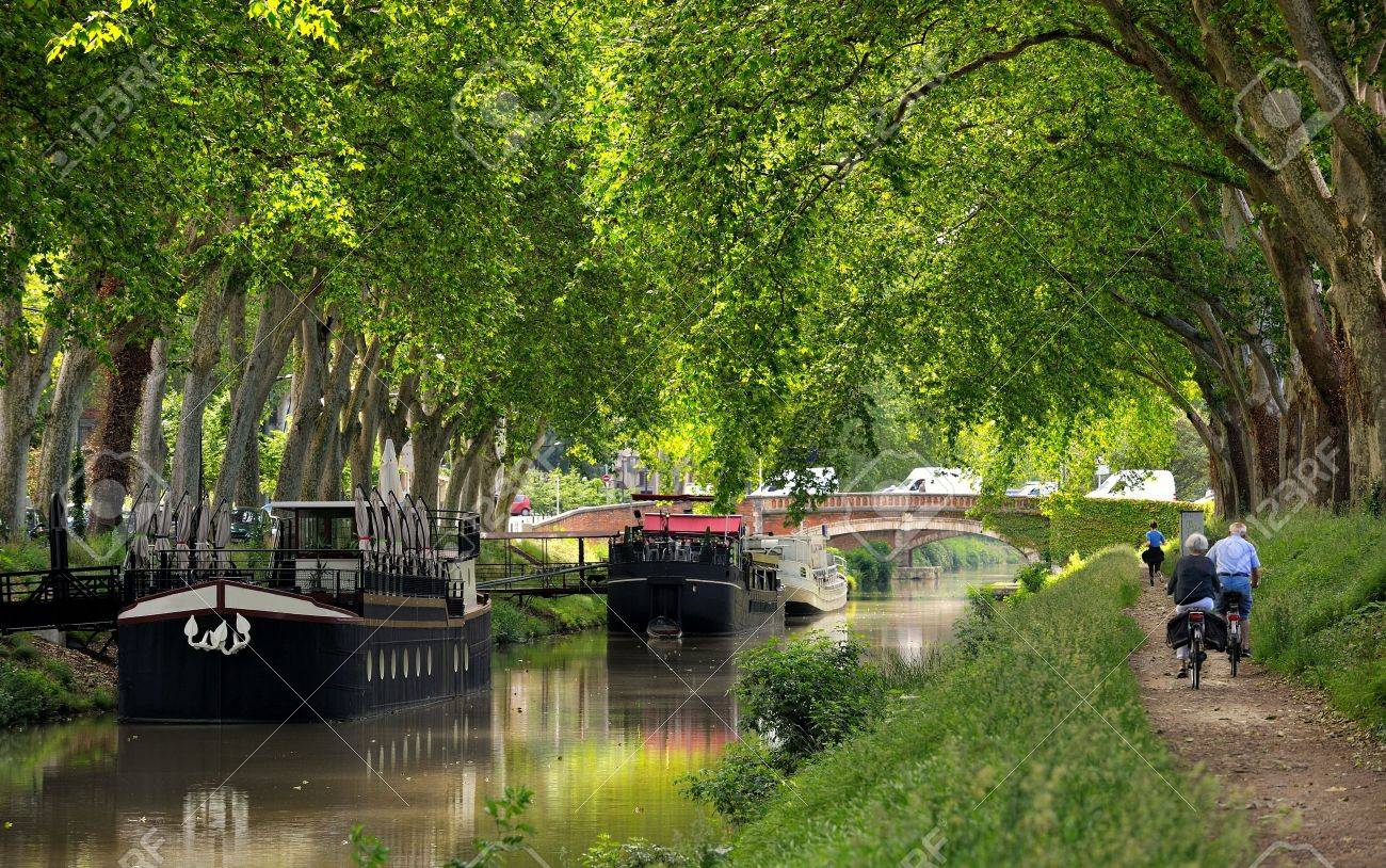 walk along the canal of midi in Toulouse, France - 20411847