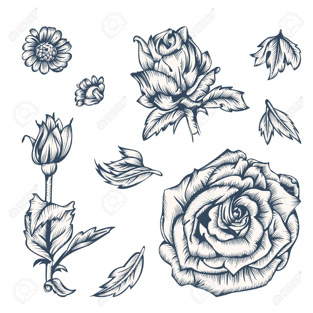 Elementos De Flores En Blanco Y Negro Para El Diseno Tinta En El